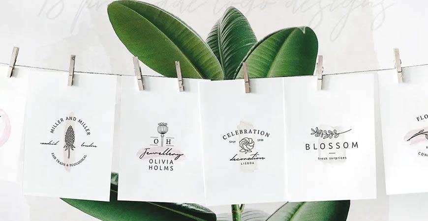 Plantilla de kit de creador de logotipo de marca de acuarela So Flowery