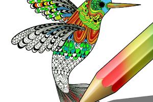Descargar Pinta y colorea